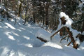 Im nachfolgenden schräg nach unten führenden Waldsteig, tauschten dann schlussendlich auch unsere Schneeteller den Platz von den Füßen zum Rucksack.
