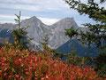 """Noch ein kleines Gustostück unter dem Namen """"Brennender Herbst"""" auf das 2084m hohe Kaiserschild, bevor …"""