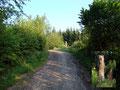 Nach nur wenigen Metern durch die Botanik erreichten wir eine Forststraße der wir fortan folgten.