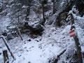 Der Michael-Kniewasser-Steig war an dieser Stelle immer sehr gut markiert. Man konnte, trotz der Schneeverhältnisse, ...