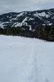"""Nach einer kurzen wohlverdienten Rast auf der Sonnenterrasse """"Alpmessaualm"""" ging es über das verschneite abgeholzte Gelände zum Waldrand abwärts, …"""