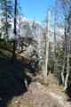 Begleitet von den Strahlen der Nachmittagssonne brachte uns der Wandersteig immer weiter ins Tal zurück.