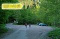 Gemütlich zum Eingehen wanderten Angela, Susi & ich das schattige Forststraßerl in wenigen Schritten vom Ausgangspunkt zur hinteren Parkmöglichkeit im Schwarzengraben. Bei der örtlichen Beschilderung orientierten wir uns in Richtung Feichtaualm und …