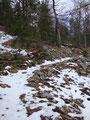 Auf nicht mal 1000m Seehöhe angekommen traf ich dann auch noch auf einige kleine Schneefelder vom vergangenen Winter.