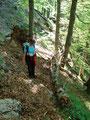 Stellenweise war der Waldsteig etwas matschig und rutschig. Jedoch mit so urigem natürlichem Geländer immer gut gesichert.