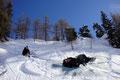 """Natürlich gab es auch den einen oder anderen Schneekontakt. Udo hingegen probierte das Rennen gleich mit dem """"Arschbob"""" zu gewinnen. Spaß pur!!! … und das Wichtigste: Es gab keinerlei Verletzungen."""