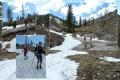 """So manch gefallene Wetterfichte wurde spielerisch überkraxelt. Letzte Altschneefelder erhöhten den Spaßfaktor beim """"Ohne-Schi-Fahren"""". So einfach wurde der Windwurfhang zur darunterliegenden Forststraße überwunden."""