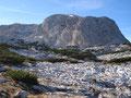 Langsam kamen wir den mächtigen hoch aufragenden Felswänden des Taubenkogels näher. Wir gingen noch bis zum Einstieg des Taubenkogel und machten dann aufgrund der vorangeschrittenen Tageszeit eine Kehrtwende und marschierten langsam retour ...