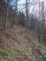 … bevor es wieder durch den Wald Richtung Gamsstein ging.