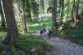 … wurde der Waldsteig wieder breiter und steiniger. Noch ein allerletztes saftiges Waldstück gemeistert …