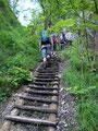 Holztreppen erleichterten das Vorankommen wesentlich. Nach den ersten nicht gerade ebenen Metern ...