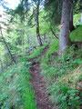 In zeitweise atemberaubenden steilen Serpentinen schraubten wir uns …