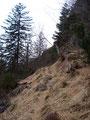 In Serpentinen führte der Steig jetzt immer steiler werdend bergwärts.