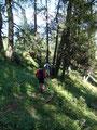 Nach dieser doch sehr lustigen Fotosession watschelten wir auch noch die letzten Meter ins Tal und zum Ausgangspunkt unserer Bergtour zurück.