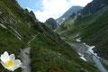 Im nächsten Moment eröffnete sich entlang des Peischlachbaches ein beeindruckender V-förmiger Taleinschnitt. Bei der darauf folgenden Weggabelung könnte man dem 67er-Adlerweg zur Tschadinalm folgen, jedoch wir …