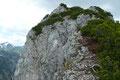 Von der Felskanzel senkte sich der steinige und von Wurzeln übersäte Steig gleich einmal einige Höhenmeter in eine Scharte hinab. Um einen Stolperer zu vermeiden setzten wir trittsicher einen Schritt vor den Anderen.