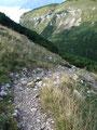 Durch eine Latschengasse folgten wir jetzt dem schottrigen Steig in den Sattel zwischen Hochanger und Loser hinab.