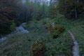 Die 100Hm im rutschigen Terrain hinter uns gelassen, drehte der Wegverlauf abermals in einem weiten Rechtsbogen durch herbstlich gefärbten Mischwaldbestand und …