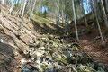 """… in eine markierte bewaldete Rinne hinauf. Von Stein zu Stein ging es anschließend diese  """"Überknöchelungspiste"""" bergauf."""