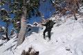 … einem Kahlschlag empor. Der aussichtsreiche Steilhang wurde daraufhin diagonal schräg nach oben zum gegenüberliegenden Waldrand übersetzt, …