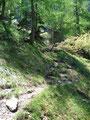 Vom Mittersee steilte der Weg erneut über Wiesen auf eine Scharte hinauf an und …