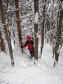 ... durch steiles, rutschiges und dicht verwachsenes Unterholz/Gelände ...