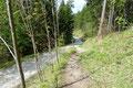 Letztendlich mündete der Pfad in die besagte Forststraße ein, …