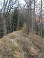 Endlich hatten wir den bewaldeten Grat erreicht. Links konnte man schon den markanten Felsturm des Stoanenen Jaga  erkennen.