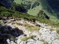 Meine äußerst chamante Wanderbegleitung Romy beschoß auf den Gipfelsturm zu verzichten und wartete unterhalb der Leiter auf mich. Nach den letzten sich hinauf schlängelnden Kehren des Wandersteiges ...