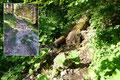 Der mäßig steile Bergpfad leitete mich im Wechselspiel zwischen Licht und Schatten durch den Wald bergwärts. Äußerst rasch verlief der erste Wegabschnitt, eine Wasserstelle passiert, …