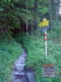 """Wir folgten nun dem hier beginnenden gemütlichen """"Gesäuse Hüttenrundwanderweg"""" Richtung Ennstaler Hütte."""