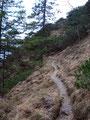 Und schon wieder führte der Steig weiter in steilen, engen Serpentinen den abschüssigen Hang empor.