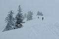 … leitete uns schlangenlinienförmig an der Geländekante der lawinengefährlichen Kälberleiten unserem Gipfelziel entgegen. Zu guter Letzt stieg unser 6er Team in weiteren Kehren über den letzten steilen Aufschwung zum …