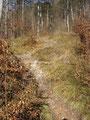 Ich wanderte serpentinenmäßig, hurtig ansteigend, den Berghang empor ...