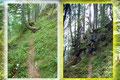 Mancherorts stellte ich mir die Frage: Sollte es beim Abstieg von einem Gipfel nicht eigentlich hinunter gehen und nicht hinauf? An dieser Stelle mussten wir auf alle Fälle noch einmal kurz ein paar Höhenmeter hinauf.
