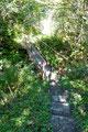 Die kleine Brücke ließ mich den Lasitzenbach überqueren und …