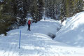 Auch wenn der Anschein trügen mag, es handelte sich hier um keinen Slalom-Durchgang. Die blauen Stangen markierten den Winterweg. Man gab sich hier wirklich sehr viel Mühe.