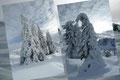 Doch schon brachten uns die nächsten Naturschönheiten der Winterlandschaft ins staunen. Aber nur einen kurz Moment, denn …
