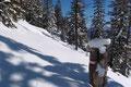 Noch dazu kam, dass aufgrund der südseitigen Exposition sich die Schneebeschaffenheit im Tagesgang als ziemlich durchnässt erwies und dadurch die Querung des steilen Waldhanges als Rutschpartie ausartete.