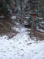 Gleich dahinter zweigte der Weg Nr. 27 ab. Dieser Weg sollte uns am heutigen Tage auch zum Gipfel bringen.