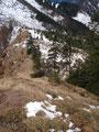 Und schon wieder machte ich mich an den steilen Abstieg zurück zur Weggabelung in Richtung Almkogel.