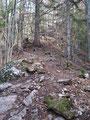 Nun änderte sich die Wegbeschaffenheit abrupt und in engen Serpentinen führte der steinige Pfad empor.