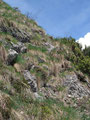 … über einen steilen grasbewachsenen Felsabbruch talwärts. Mit einigen gut kontrollierten Schritten war dies auch gleich überwunden und …