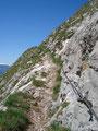 Oben angekommen, führte uns der schmale Steig nach links wieder den abschüssigen Südhang entlang.