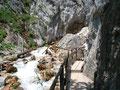 Tosend rauschte das Wasser durch die Felsen, dicht an denen vorbei führte der Holzsteg im kühlen Sprühnebel dahin.