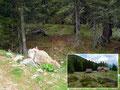 Wir hielten uns hier links der Hütte auf dem markierten Wandersteig Richtung Rottenmanner Hütte.