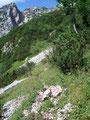 Nach dem wir das Bergmassiv erneut gequert hatten ...