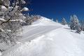 Ein stark überwechteter zur Gipfelhaube hinaufführender Rücken löste den lichten Winterwald ab. Die Kunstwerke aus der Hand des Baumeisters Wind sahen zwar wunderschön aus, doch es roch nach Arbeit.