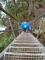 ... die es mit Leitern oder Stufen zu überwinden galt.