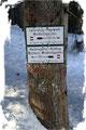 … in Richtung Mayrwinkl über das bewaldete Laubkögerl (1230m) …